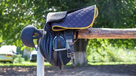 Leather equipment for riding horses 스톡 콘텐츠