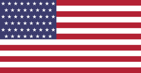 United States flag. Original and high quality Vector