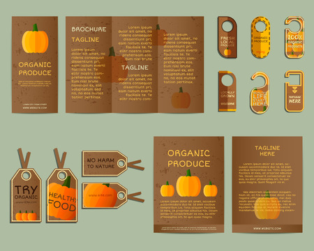 fairs: Natural business corporate identity design with pumpkin. Branding your organic company. Brochure. Mock up design. Best for natural shop, organic fairs, eco markets and local companies. Vector. Illustration