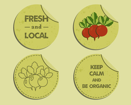 fairs: Summer Farm Fresh branding identity elements. Label, badge templates. Organic design. Mock up. Best for natural shop, organic fairs, eco markets and local companies. Vector illustration