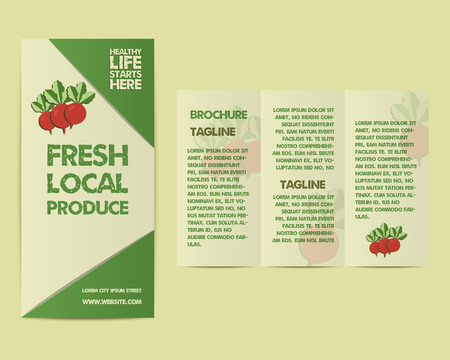 fairs: Summer Farm Fresh flyer template or brochure design with radish and text. Mock up design with shadow. Best for natural shop, organic fairs, markets, eco events and local companies. Vector illustration
