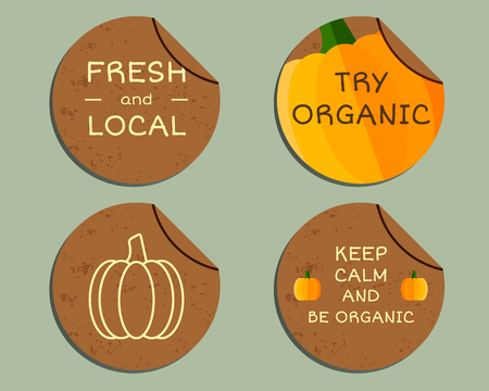 fairs: Organic farm corporate identity design with pumpkin. Branding your eco shop, company. Labels, badges. Mock up design. Best for natural shop, organic fairs, bio markets and local companies. Vector.