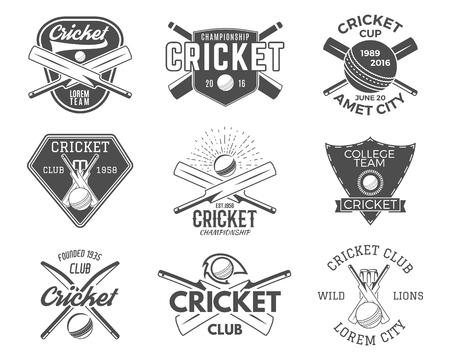 sporting equipment: Set of cricket sports designs. Cricket icons vector set. Cricket emblems design elements. Sporting tee designs. Cricket club badges. Sports symbols with cricket gear equipment for web or t-shirt