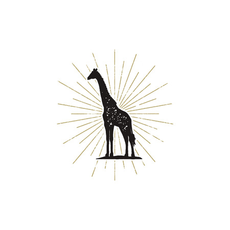 Hand drawn giraffe silhouette illustration, vintage black giraffe with sunbursts, good for tee shirt, clothing prints, mugs, travel pennant designs.