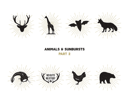 Set of wild animal figures and shapes with sunbursts isolated on white background. Black silhouettes giraffe, chicken, fox, deer, catfish and bat . Use as icons or in logo designs. Vector pictograms Illustration