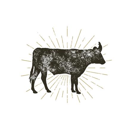 ヴィンテージ手描き下ろし牛アイコン。ファーム動物シルエット図形。輝かしく、白い背景で隔離のレトロ黒牛。図