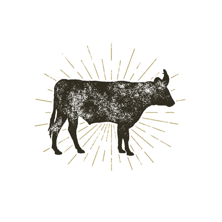 Vintage hand getrokken koe pictogram. Boerderij dieren silhouet vorm. Retro zwarte stijlkoe met zonnestralen, die op witte achtergrond worden geïsoleerd. Illustratie Stockfoto