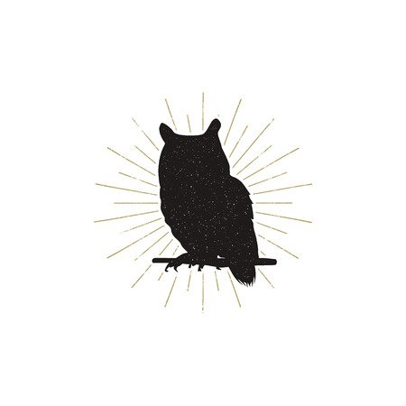 Owl silhouette shape isolated on white background. Black animal icon. Solid template with sunbursts.