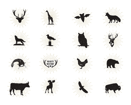 Set of wild animal figures and shapes with sunbursts isolated on white background. Black silhouettes wolf, deer, moose, bison, eagle, seagull, cow, and owl. Animals shapes bundle. .