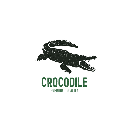 crocodile logo template. Symbol of alligator, Crocodile with text.