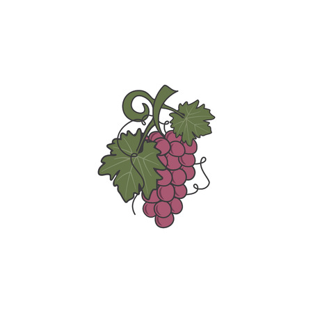 Red Grape icon. Cute flat colors design. Friut symbol for logo, label or badge. Stock vector illustration isolated on white background Ilustração