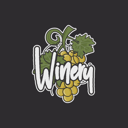 Wine, winery logo template. Drink, alcoholic graffiti art, beverage symbol. Vine icon and typography design. Winery, premium quality sign. Stock vector illustration isolated on dark background