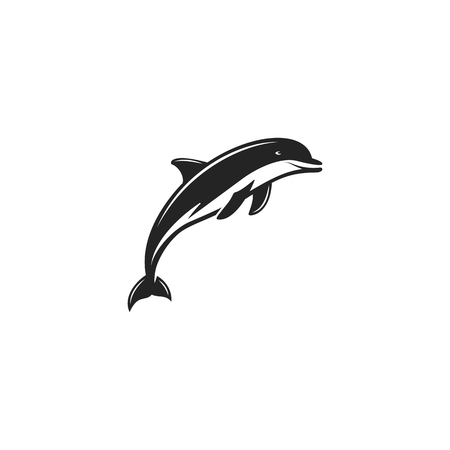 Dlphin black icon. Silhouette symbol of dolphin isolated on white background. 矢量图像
