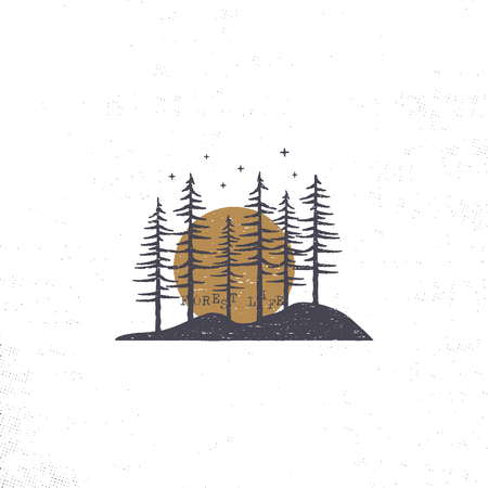 Hand drawn forest with sun concept. Pine trees textured illustration with stars.