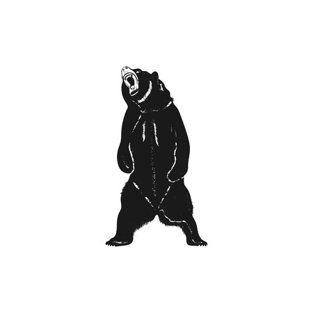 Grizzly bear silhouette shape. Distressed wild animal icon. Stock vector pictogram isolated on white background