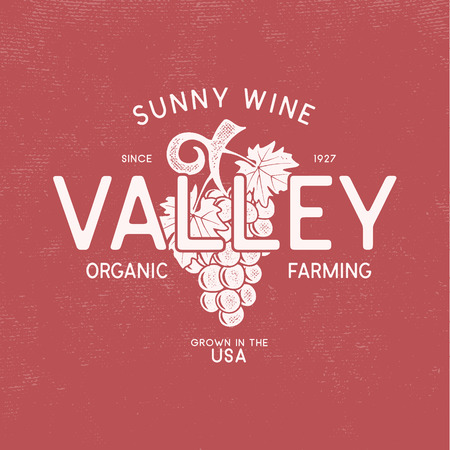 Sunny wine valley shop , winery  template concept. Vine, leaf and typography design. Stock vector emblem isolated on white background