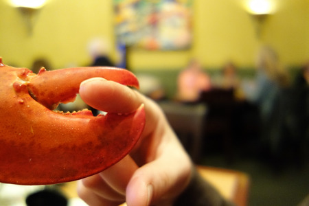 A lobster claw squeezing an index finger in a New Orleans restaurant photo
