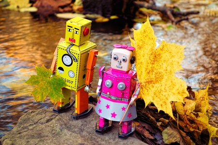 bourn: Two toy robots with autumn leaves on the small rock in the middle of the small river