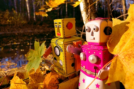 bourn: Two toy robots with autumn leaves by the river in the woods nearby Helsinki, Finland. Stock Photo