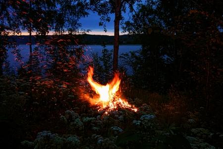 oudoors: Firebird shape bonfire