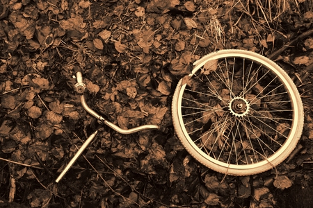 decomposed: Ruedas y manillar con campana abandonada en el bosque bicicleta Descompuesto