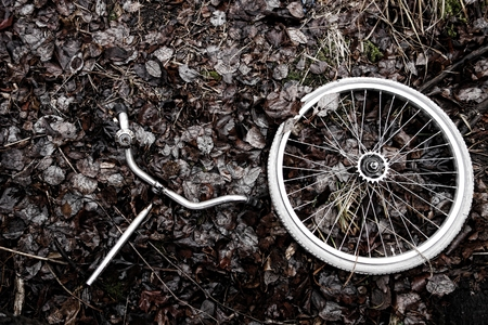 handlebars: Decomposed bicycle wheel and handlebars with bell abandoned in the woods Stock Photo
