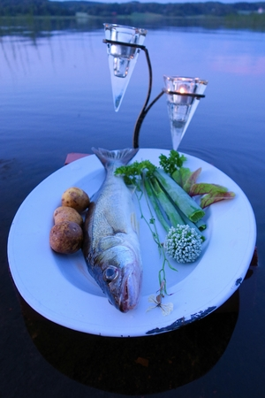 pikeperch: Fresh fish catch pike perch on plate served with fresh vegetables in outdoors setting on a lake with candles as a decoration. Stock Photo
