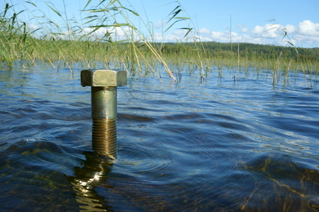 Environmental concept: big and brassy single nut stands in the water on Fall day in Nordic country with water solutions, clean environment and sustainability ideology concept suggestions. 免版税图像