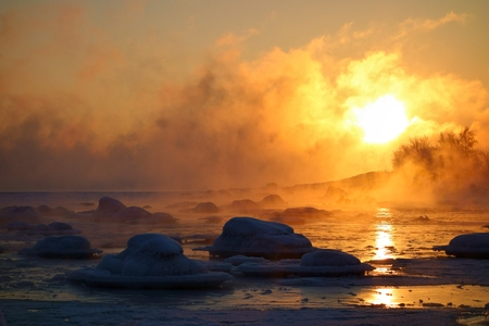 suomi: Swans in last open water in extremely cold and misty morning with sea smoke from the Baltic Sea at sunrise time in Helsinki, Finland.