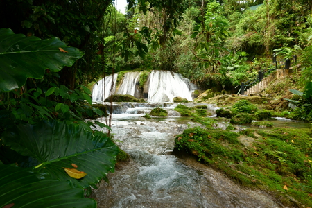 Reach Falls and lush rain forest in Portland parish, Jamaica 免版税图像