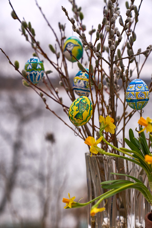 Coloured Easter eggs, willow catkins and narcissus flowers in outdoors settings in Western Finland. Stock Photo