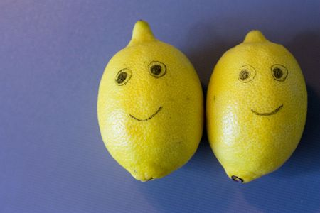 Two lemons friends Stock Photo - 5610480