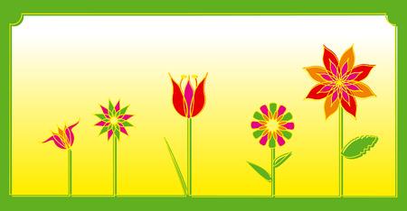 spring flowers decoration colors