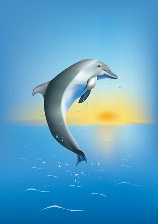un dauphin plongeant dans la mer sur fond og coucher du soleil