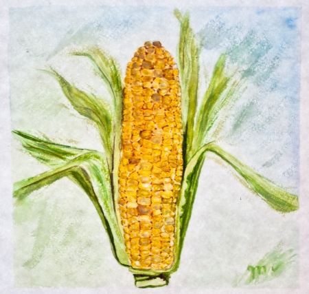 ripe corn painting with watercolor Stock Photo