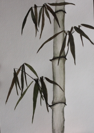 bamboo chinese painting Stock Photo - 19356508