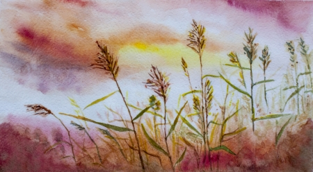 cane sunset asian landscape watercolor Stock Photo - 20384354