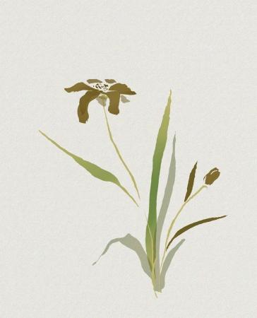 aquarelle de fleur dans le style asiatique avec un hiéroglyphe