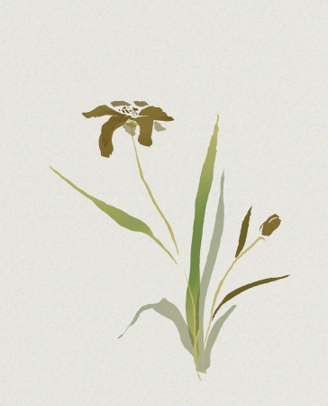 watercolour of flower in asian style with a hieroglyph Stock Photo