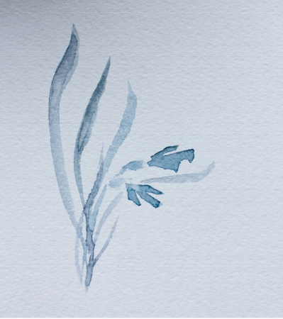 japanese watercolour sumi-e of a blue flower  photo