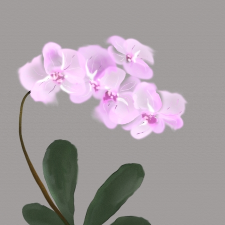 lilac orchids watercolor likewise japanese painting Stock Photo - 21173108