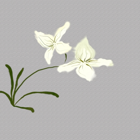 white orchids watercolor likewise japanese painting Stock Photo - 21173109