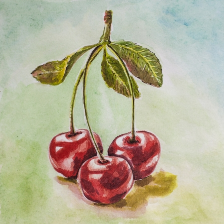 tripled cherry on the desk watercolor Stock Photo