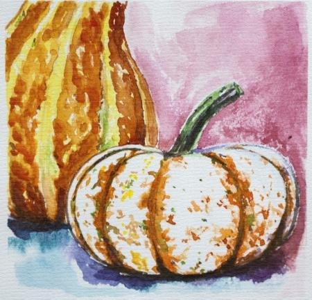 Ripe pumpkin harvest watercolor. Thasnkgiving.
