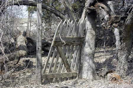 homestead: An old, forgotten gate on a rural homestead.
