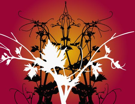 vitis: background  with leaves on dark back