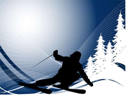 스키: Ski sport
