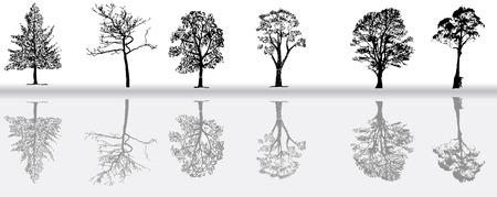 Tree  silhouettes  Illustration