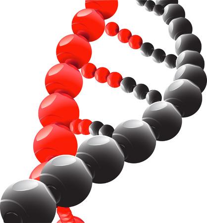 chromosome: DNA
