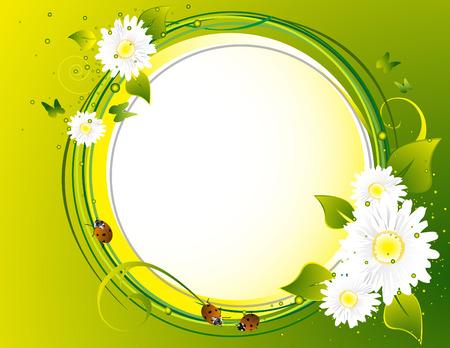 flower ladybug:  Floral background
